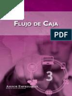 FLUJO-DE-CAJA.pdf