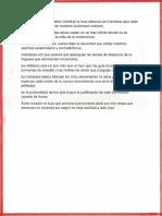 """2do. Lugar del concurso """"El amor entre letras"""""""