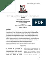 ELABORACIÓN DE UN DIAGRAMA DE FLUJO DE UN LABORATORIO CLÍNICO