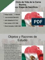 Presentacion ACV Carne Bovina Ppt Unificada