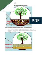 Soils Part 2 Notes