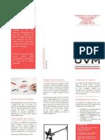 Desarrollo de Marcas y Merchandising - Actividad 1 - Tríptico