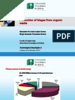 Bioenergias (1)