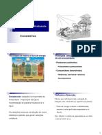 Ciencia do ambiente - Aula 4 - Ecossistemas terrestres A.pdf