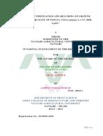 """EFFECT OF FERTIGATION AND MULCHING ON GROWTH, YIELD AND QUALITY OF PAPAYA (Carica papaya L.) CV. RED LADY"""