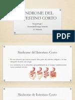 4c. SINDROME DEL INTESTINO CORTO.pptx