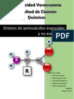 Síntesis de Aminoácidos Esenciales y No Esenciales