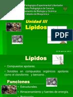 Presentación de Lípidos