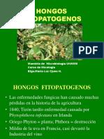 Hongos Fitopatogenos 3.ppt
