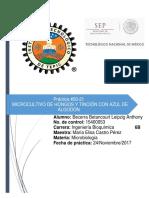 Práctica 20 Microbiología