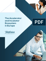 The Accelerator and Incubator Ecosystem in Europe.pdf