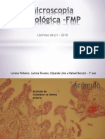 Microscopia Patológica1 -FMP FINAL