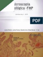 Microscopia Patológica1 -FMP FINAL