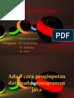 PP Penginputan Data