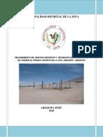 Pip Paraiso La Joya 29-01-2018