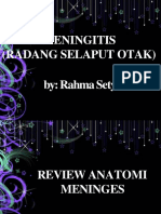 meningitis-130220203904-phpapp02