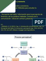 Teorico-Percepcion.-Goldstein.pdf
