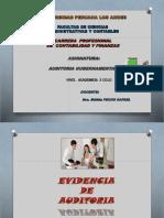 10º Evidencia de Auditoria