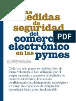 Las Medidas de Seguridad Del Comercio Electrónico en Las Pymes