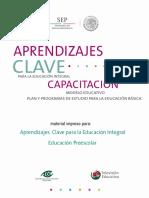 Curso Preescolar.pdf