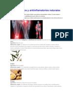 Analgésicos y Antiinflamatorios Naturales