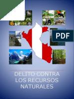 175663475-Word-Delitos-Recursos-Naturales.docx