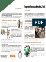 Cartilla rabia- mordedura de perro.pdf