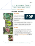 Rose Problems.pdf