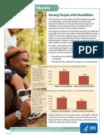 obesityfactsheet2010
