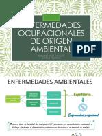 Enfermedades Ocupacionales de Origen Ambiental