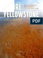Before Yellowstone