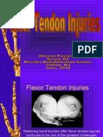 week 23 Flexor_tendon_Injuries-_SHEENA_2010_part_1