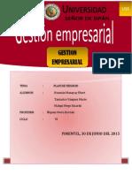 Proyecto Gestion Empresarial 2015