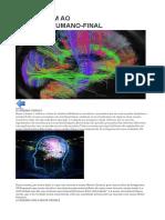 Uma Viagem Ao Cérebro