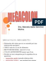 Mega Colon