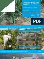 Avance de Usuarios Agosto 2017 - Irrigación Olmos