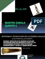 celulas.pptx