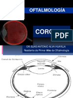 5.7 Anatomía e Histología de La Coroides