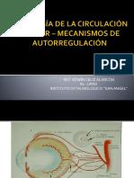 5.10 Fisiología de La Circulación Ocular