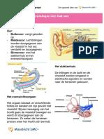 Anatomie en Fysiologie Van Het Oor