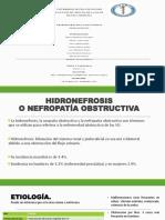 DIAPO-HIDRONEFROSIS