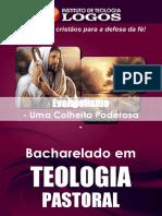 24 - BEL Teologia Pastoral Evangelismo
