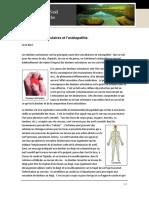 Les Douleurs Articulaires Et l'Ostéopathie