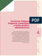 Informe 2010 - Parte i Estado de Situacion de Los Tioc 2
