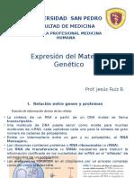 9. Expresion Genica, Transcripcion y Traduccion
