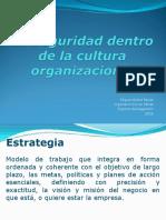 3.-Seguridad Dentro de La Cultura Organizacional