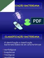 Classif Bacteria