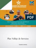 Plan Vallejo Servicios 2017.pdf