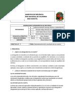 INFORME-7.pdf
