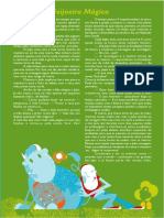 JoaoFeijaoMagico1.pdf
